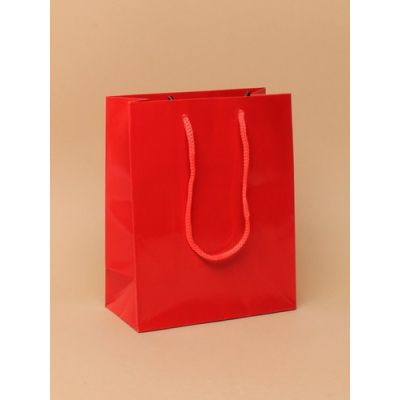 Size: 15x12x6cm Glossy Red gift bag.