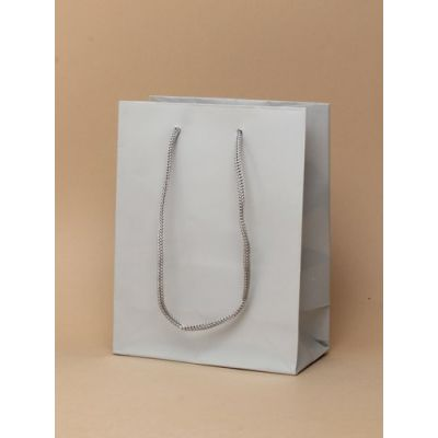 Size: 15x12x6cm Glossy Silver gift bag.