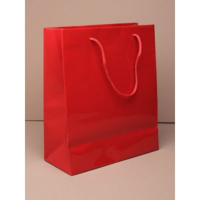 Size: 23x18x9cm Glossy Red gift bag.