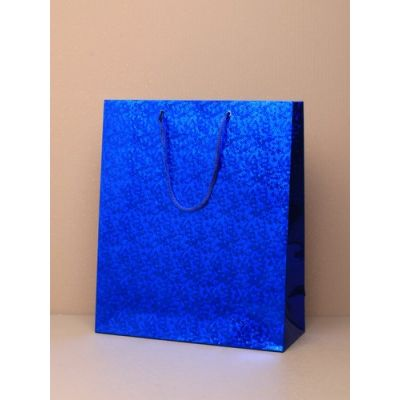 Size: 21.5x18x7.5cm Blue Holographic gift bag.