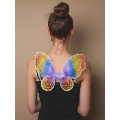 Rainbow net fairy wings. 30x24cm
