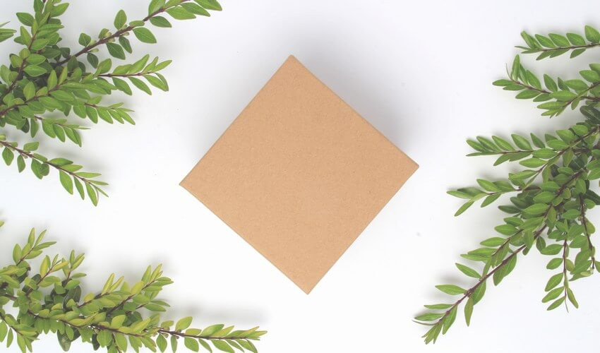 Wholesale Eco Friendly Packaging - Natural Kraft Gift Box With Green Leaves